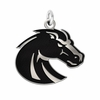 Boise State Broncos Silver Charm