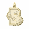 Brown Bears 14K Yellow Gold Natural Finish Cut Out Logo Charm