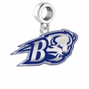Bucknell Bison Silver Logo and School Color Drop Charm
