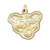 Cornell Big Red 14K Yellow Gold Natural Finish Cut Out Logo Charm