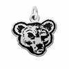 Cornell Big Red Silver Charm