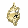 Ferris State Bulldogs 14KT Gold Charm