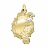 Ferris State Bulldogs 14K Yellow Gold Natural Finish Cut Out Logo Charm
