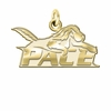 Pace Setter 14K Yellow Gold Natural Finish Cut Out Logo Charm