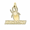 Richmond Spiders 14K Yellow Gold Natural Finish Cut Out Logo Charm