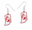 State Cutout and School Logo Dangle Earrings