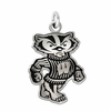 Wisconsin Badgers Silver Charm