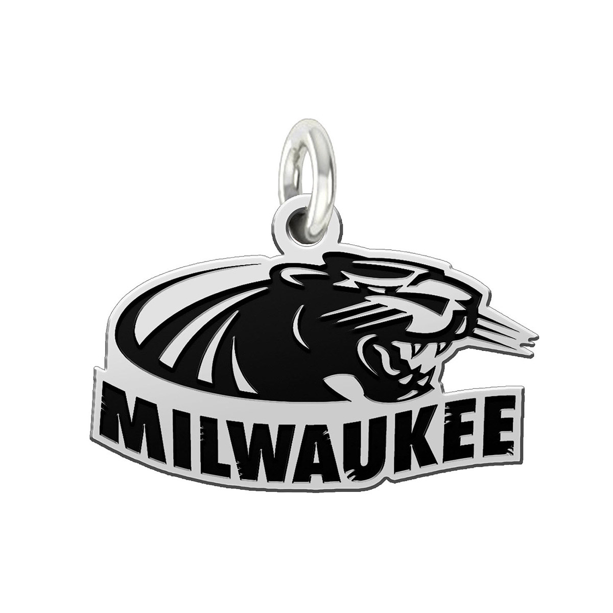 Wholesale Wisconsin Milwaukee Panthers Charm And Pendant