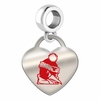 Youngstown State Penguins Color Heart Dangle