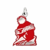 Youngstown State Penguins Logo Charm