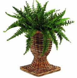 French Country Rattan URN