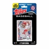 Washington Nationals 2014 Topps Baseball Card Team Set