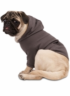 Doggie Dog Thermal Hoodie