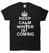 Keep Calm Winter Is Coming T-Shirt