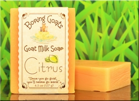 Citrus Goat Milk Soap