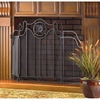 Medallion Fireplace Screen