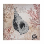 Spiral Conch Shell Canvas Wall Art