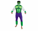 Adult Incredible Hulk Costume