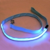 Safety LED Dog leash.. Free Delivery