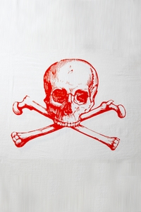 Skull Towel in Red
