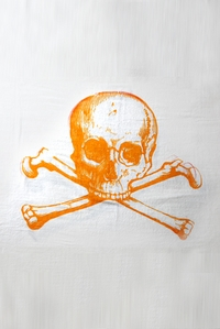 Skull Towel in Orange
