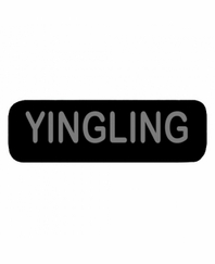 YINGLING Patch Small Black