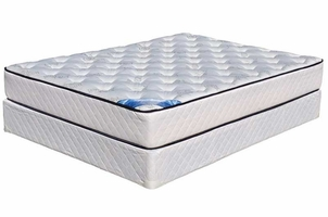 Kingdom Sea Shell Queen Firm Mattress