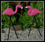 Flamingoes 2 Retro
