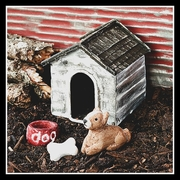 Mini Dog House W/Dog