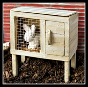 Miniature Bunny Hutch & Rabbit