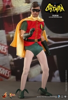 Robin Sixth Scale