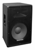"Marathon (MA-JR115) Compact Single 15"" Two Way Portable Loudspeaker System"
