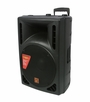 "Mr. Dj (PBS-2005AMP) Single 15"" 1000 Watts 2 Way Speaker 2000 Watts Maximum"
