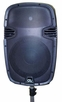 "GLI Pro (Punch 12 USB) Molded Powered 12"" Speaker 1500 Watts"