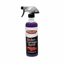 Adam's Polishes - Invisible Undercarriage Spray (16 oz)