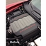 Corvette 2014 C7 Painted Engine Plenum Cover Overlay - click to enlarge
