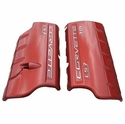 Corvette Fuel Rail Covers - Un-Painted with : 2006-2013 Z06 LS7