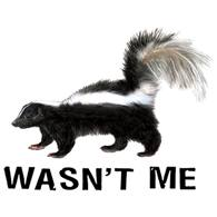 Wholesale Custom Clothing, Funny T Shirts - 08991A4-1 Skunk wasn't me
