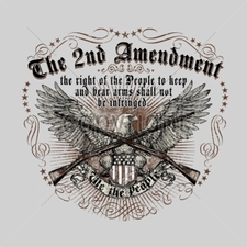 Wholesale T-Shirts - Gun Clothing, 13643-14x13-2nd-amendment