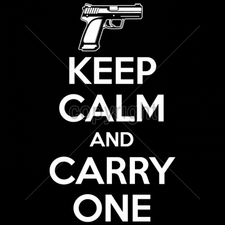 Wholesale Clothing Apparel - Gun T Shirts - 16215-8x14-keep-calm-and-carry-one