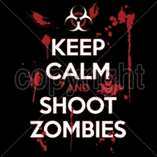 Wholesale Bulk T Shirts Funny Fashion - Wholesale - Funny T Shirts - MSC DISTRIBUTORS - P-2028 -16332-10x14-keep-calm-and-shoot-zombies