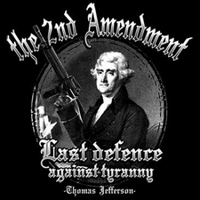 Wholesale T Shirts, Custom Clothing - 2nd amendment thomas jefferson, T Shirts Gun - 18286D1