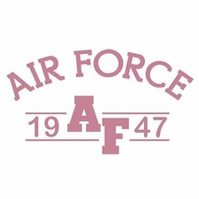 Wholesale Clothing Apparel Military T-Shirts Bulk Supplier - Air Force 1775 a12307d