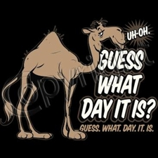 Wholesale T-Shirts - Custom - a10248c camel guess what day it is