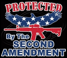 2nd Amendment Gun T Shirts - C-453