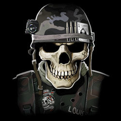 Patriotic Wholesale T-Shirts Suppliers - MILITARY SKULL 20482D2-2T