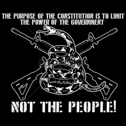 Gun Shirts, Wholesale Hunting T-Shirts -18432-11x9-purpose-constitution-limit-power-government-not-people