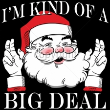 Wholesale T-Shirts Bulk Funny Cool Cheap - holiday T-Shirts 13x13-im-kind-big-deal-santa