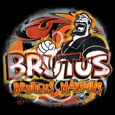 Shirts Military Suppliers - Brutus2