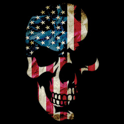 Patriotic Wholesale T-Shirts Suppliers - SKULL AMERICANA  19425D2-1